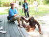 Gregg with orangutan at Camp Leakey, Kalimantan, Indonesia