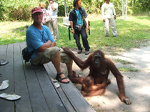 Gregg Granger with an orangutan resting her hand on his leg
